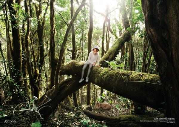 Les pro příští generace